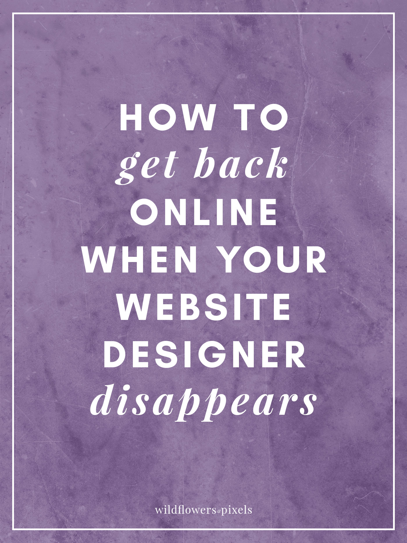 How To Get Back Online When Your Website Designer Disappears