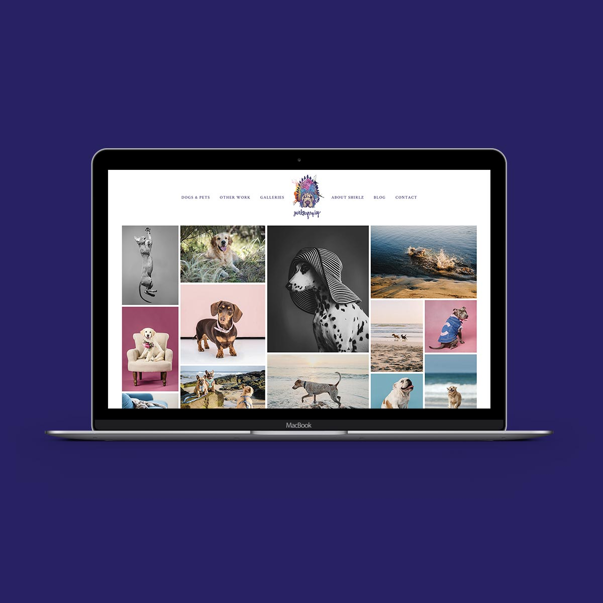 Small-Business-Website-Design-UK-Pet-Photography-Website